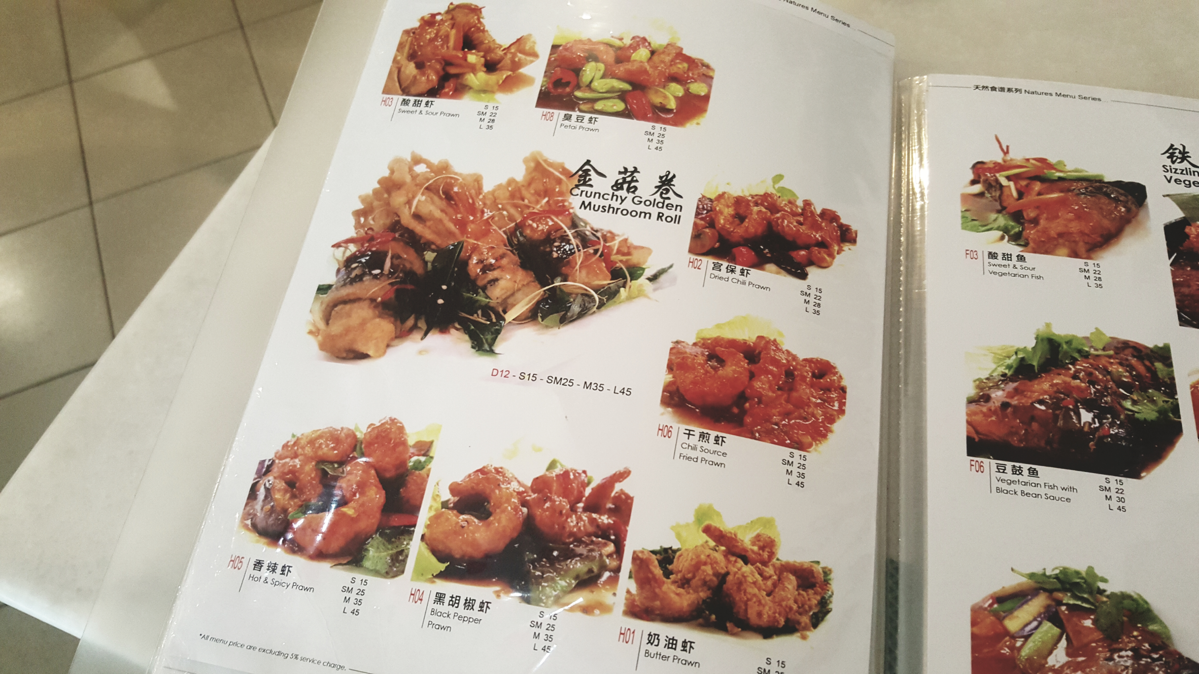 Nature's Vegetarian Restaurant @ PJS 8 – I loveeee meat but